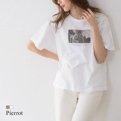 Tシャツ カットソー プリントT フォトT 綿100% 半袖 クルーネック 高品質 ホワイト ベージュ 春 レディース MD
