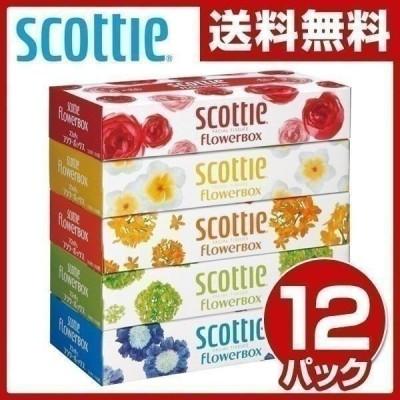 スコッティ ティッシュペーパー フラワーボックス 160組 5箱×12パック 41269 まとめ買い 安い 業務用