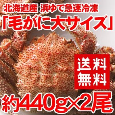 北海道産 毛がに大2尾 約440g 2尾 取り寄せ オープン記念
