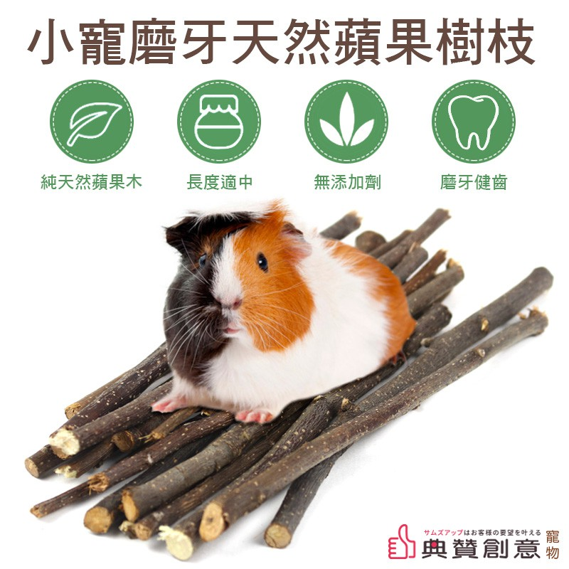 小寵磨牙天然蘋果樹枝 磨牙蘋果枝 磨牙樹枝 鼠兔磨牙棒 倉鼠兔子天竺鼠龍貓刺蝟鸚鵡 鼠用品 兔用品 鳥用品 典贊創意
