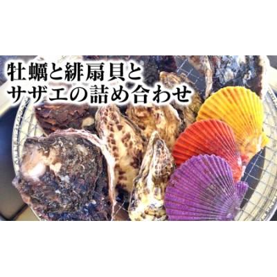 B507 牡蠣と緋扇貝とサザエの詰め合わせ