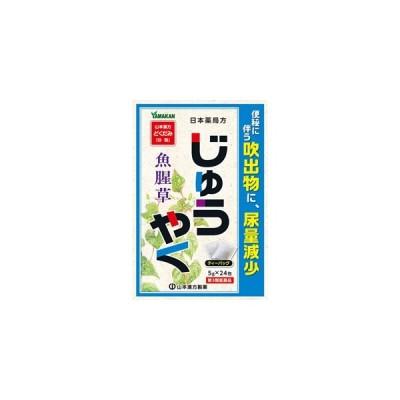 じゅうやく 5g×24包 【第3類医薬品】*配送分類:1