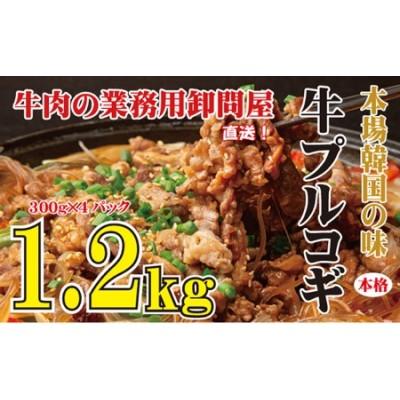 本場韓国の味 本格牛プルコギ 1.2kg ※北海道・沖縄・一部離島お届け不可