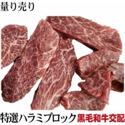 黒毛和牛交配  特選ハラミサガリ 約0.8kg~ 個体差有り 量り売り