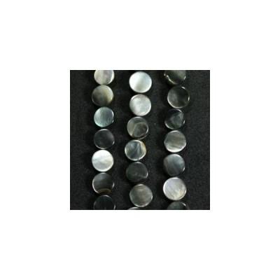 シェルパーツ 黒蝶貝 10mm ディスク 10個