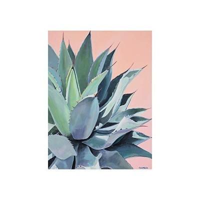 Trademark Fine Art Glory Agave by Alana Clumec, 18x24