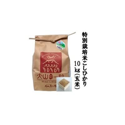 ふるさと納税 MS-15 特別栽培米こしひかり10kg(玄米) 鳥取県大山町