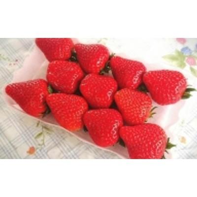 イチゴ(あすかルビー)