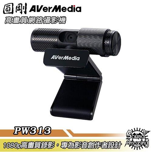 [滿額現折$50]圓剛 PW313 Live Streamer CAM 高畫質網路攝影機 webcam/直播視訊【Sound Amazing】