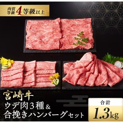 宮崎牛ウデ肉3種&合挽きハンバーグセット(合計1.3kg)