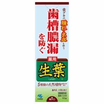小林製薬 薬用 生葉(しょうよう)b 100g 【医薬部外品】