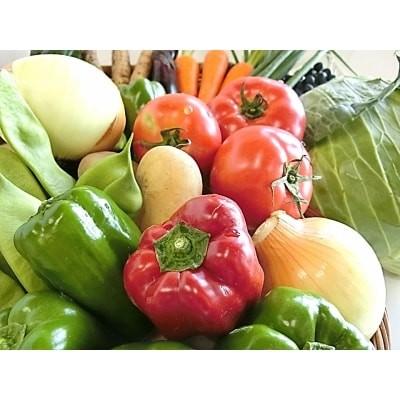 安芸野菜・果物の詰め合わせ