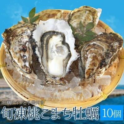 牡蠣 Mサイズ 10個入 冷凍殻付き牡蠣 産地厳選 加熱用(発泡箱入・牡蠣ナイフ・片手用軍手付き)海鮮バーベキューセット