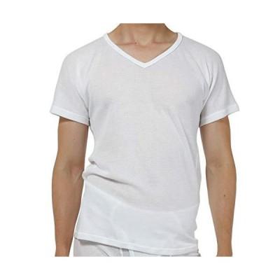 [新商品]ひだまり本舗[紳士用]ひだまり ドライ 半袖シャツ (LL, ホワイト)[XC-103-WH]