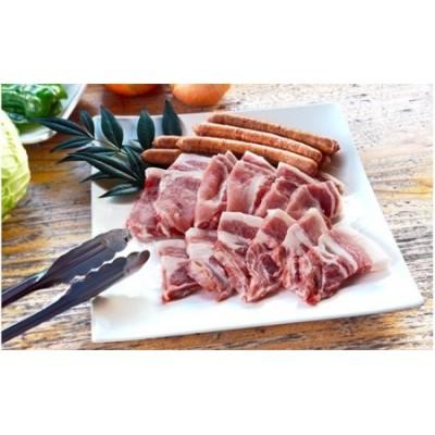 農林水産大臣賞獲得「四万十ポーク」 麦豚 焼き肉用ロース1.1kg Ahc-01