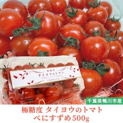 トマト フルーツトマト 産地直送 千葉県産 お取り寄せ タイヨウのトマトべにすずめパック 500g