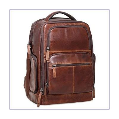 Voyager Tech Backpack #7527 (Brown)[並行輸入品]