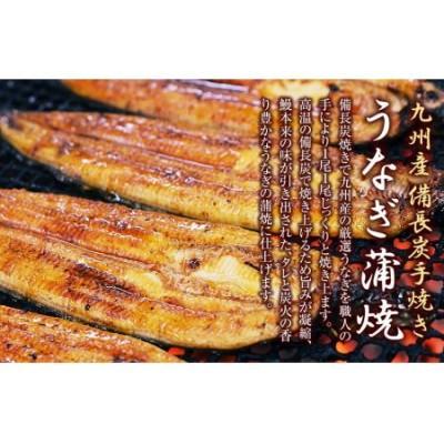 【九州産】備長炭手焼きうなぎの蒲焼(長焼)2尾