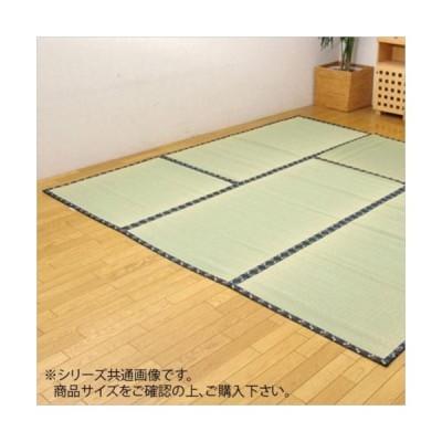 純国産 い草 上敷き カーペット 糸引織 『日本の暮らし』 江戸間3畳(約176×261cm) 1105233 (APIs)