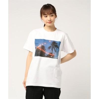 tシャツ Tシャツ パームツリー Photo Tシャツ